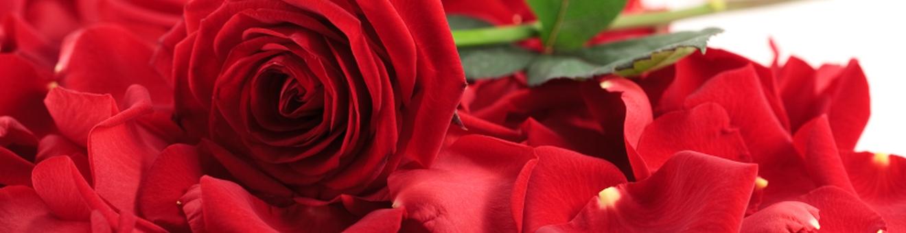 Walentynkowy Weekend